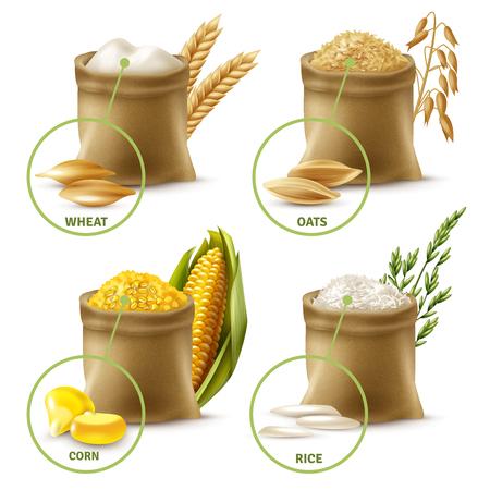 Ilustración de Set of agricultural cereals including sacks with wheat flour, oat, corn and rice isolated vector illustration - Imagen libre de derechos