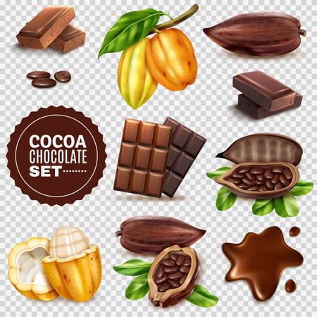Ilustración de Set of realistic fresh and dried cocoa pods with seeds, chocolate isolated on transparent background vector illustration - Imagen libre de derechos