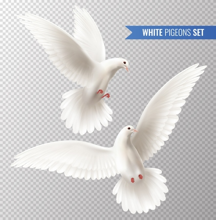 Illustration for White dove transparent set with peace symbols realistic isolated vector illustration - Royalty Free Image