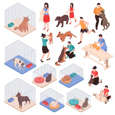 Ilustración de Animal shelter with dogs and cats in cages human characters with pets isometric set isolated vector illustration - Imagen libre de derechos