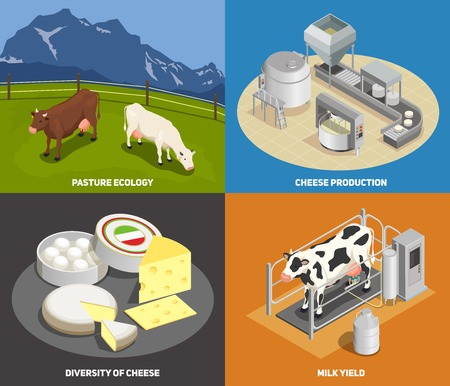Ilustración de Cheese production 2x2 design concept set of pasture milk yield manufacturing diversity of cheese square icons isometric vector illustration - Imagen libre de derechos