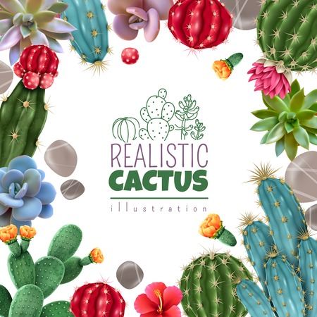Illustration for Blooming cacti and popular succulents varieties easy care decorative indoor plants realistic colorful square frame vector illustration - Royalty Free Image