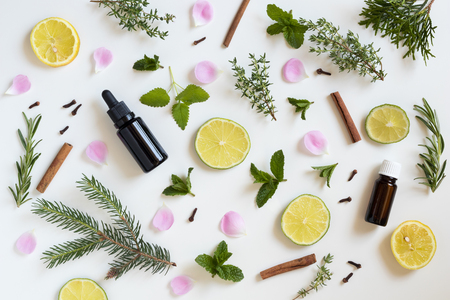 Photo pour Selection of essential oils and herbs on a white background - peppermint, lime, lemon, melissa, thyme, rosemary, cinnamon, clover, thuja, rose petals - image libre de droit