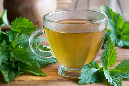 Photo pour A cup of nettle tea on a wooden table, with fresh stinging nettles in the background - image libre de droit