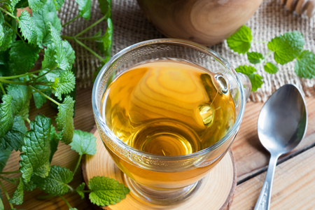 Photo pour A cup of melissa (lemon balm) tea on a wooden table with fresh melissa twigs - image libre de droit