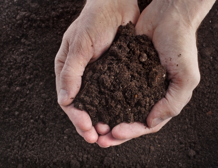 Photo for Hand holding soil surface top view - Royalty Free Image