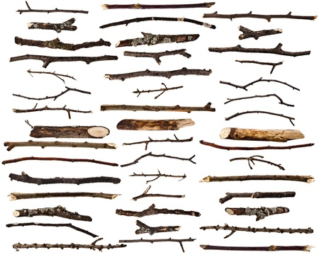 Photo for Collection set of dry wood branches isolated on a white background - Royalty Free Image