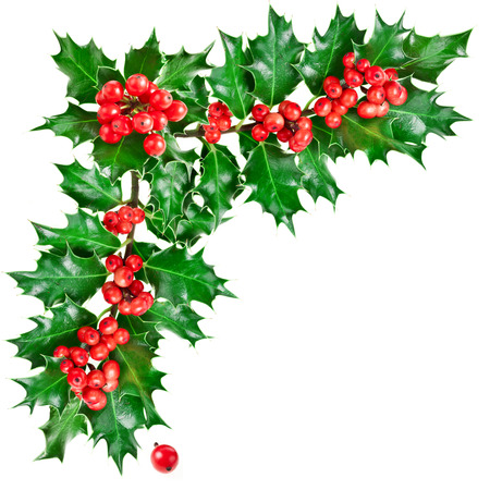 Photo pour Decorative corner with Christmas holly with berries. - image libre de droit