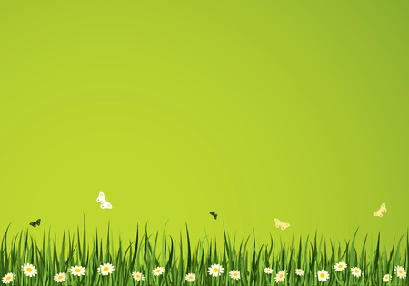 Summer Time Vector Background. Nature Collection.