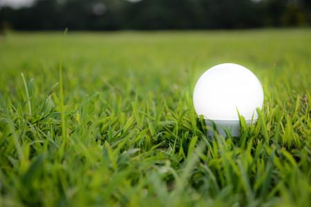 Foto de LED Bulb with lighting- The lighting Technology - Imagen libre de derechos
