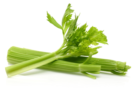 Photo for Fresh celery stalks isolated on white background. Studio shot. - Royalty Free Image