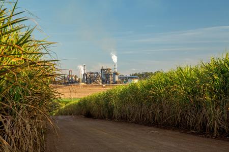 Foto de factory sugar cane - Imagen libre de derechos
