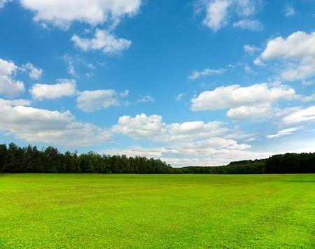Photo pour Beautiful green field and sky - image libre de droit