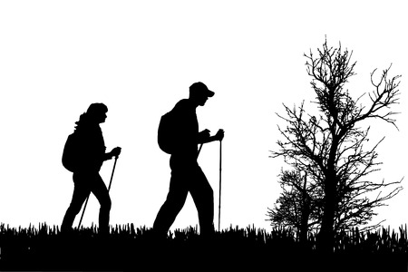 Illustration pour Vector silhouette of people with nordic walking in nature. - image libre de droit