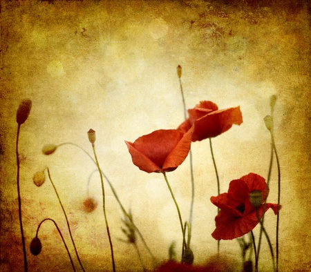 Photo pour vintage poppies on ambient background grunge - image libre de droit