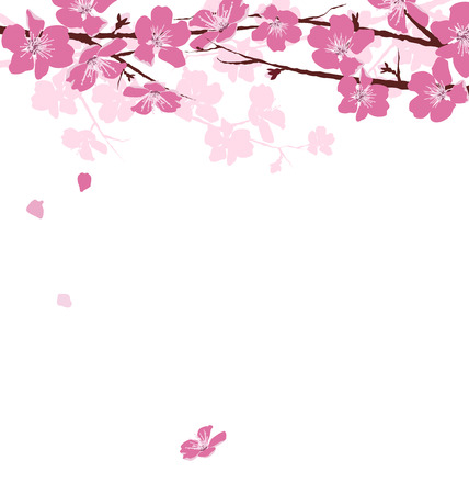 Ilustración de Branches with pink flowers isolated on white background - Imagen libre de derechos