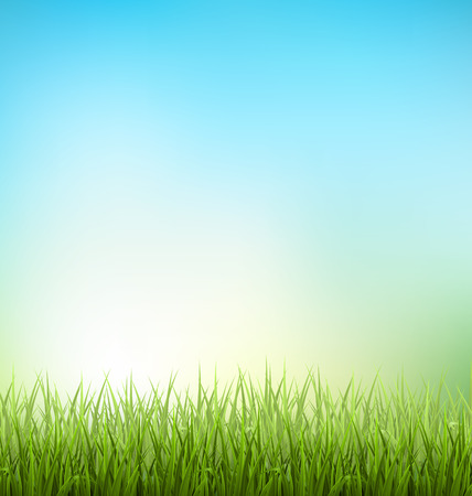 Illustration pour Green grass lawn with sunrise on blue sky - image libre de droit