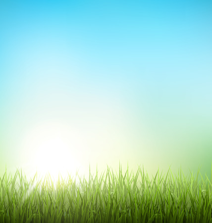 Illustration for Green grass lawn with sunrise on blue sky. Floral nature spring background - Royalty Free Image