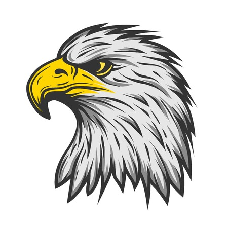 Illustration for Proud eagle head. Color version Vector illustration. - Royalty Free Image