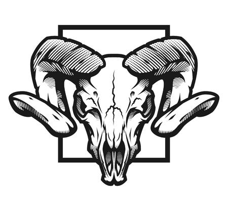 Illustrazione per Ram skull, black and white emblem, illustration. - Immagini Royalty Free