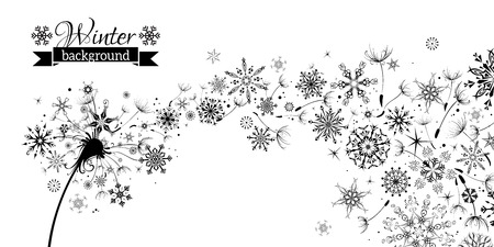 Illustration pour Winter and Summer. Winter Dandelion Background. Black flying dandelion fluffs and snowflakes on white background. There is place for your text. - image libre de droit