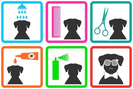 Illustration pour  pet care icons with fashion doggy with sunglasses - image libre de droit
