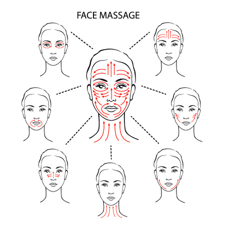 Illustration pour Set of face massage instructions isolated on white background. Vector illustration of massage lines on woman face. How to apply cream to the face and neck. Relaxing techniques. - image libre de droit
