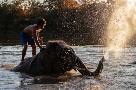 Foto de KANCHANABURI,THAILAND - SEPTEMBER 3,2017:The bathing elephants. At the River Kwai in the evening. In CHANG PUAK CAMP Kanchanaburi, Thailand - Imagen libre de derechos