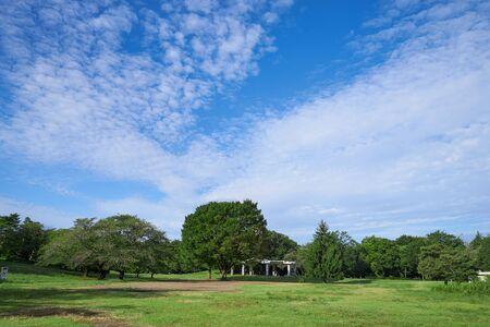 Foto de A park with lush vegetation, clouds and blue sky - Imagen libre de derechos