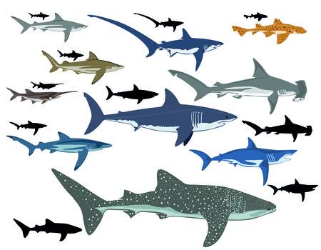 Ilustración de Sharks, collage - Imagen libre de derechos