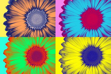 Photo pour Abstract daisie in pop-art style - image libre de droit
