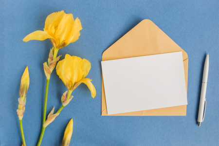 Photo pour Mockup white greeting card and envelope with iris flowers and light background - image libre de droit