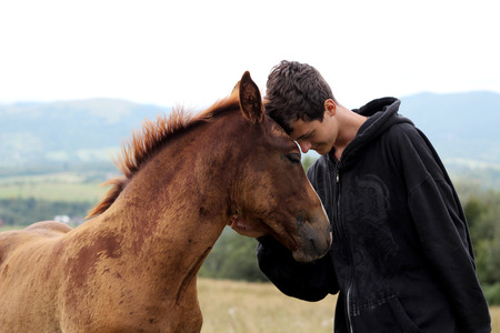 Photo pour Young boy during the high mounting walking meets a young horse and communicates with it, wild nature, people and animals friendship concept, lifestyle summer outdoor - image libre de droit