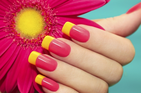 Two-tone manicure with pink and yellow varnish with flower gerbera on a blue