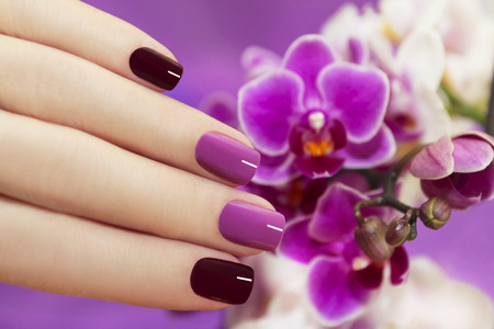 Two-tone fashion nails on female hand with orchids