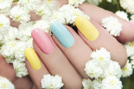 Photo pour 	   Pastel manicure on female hand with flower Hipsofilas  - image libre de droit