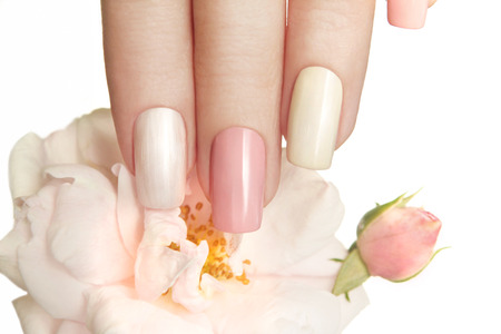 Photo pour Pastel manicures with different bright colors on your nails with a rose on a white background. - image libre de droit