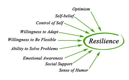 Photo pour Diagram of Resilience - image libre de droit