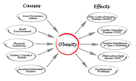 Foto per Obesity: causes and effects - Immagine Royalty Free