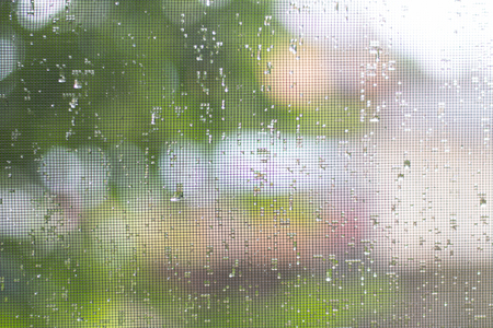 Foto de on the mosquito net drops from the rain close-up - Imagen libre de derechos