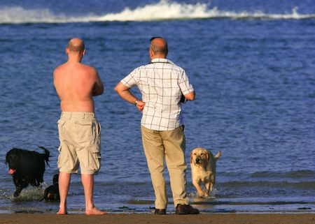 Two men standing at the shoreline with their dogs.