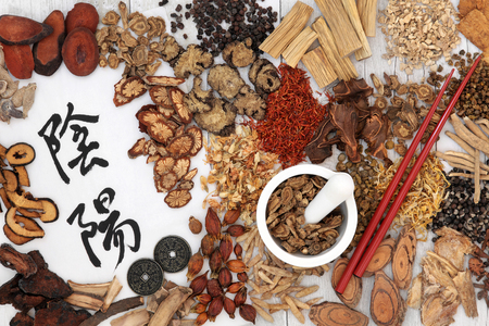 Photo for Yin and yang symbols with traditional chinese herbal medicine selection, i ching coins, mortar with pestle and chopsticks. - Royalty Free Image