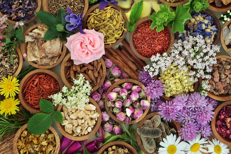 Foto de Herbs and flowers used in herbal medicine and chinese and natural homeopathic remedies background. - Imagen libre de derechos