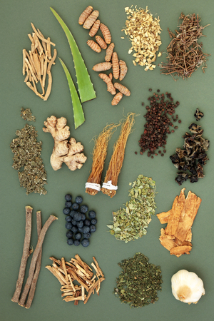 Photo pour Adaptogen food selection with herbs, spices and fruit. Used in herbal medicine to help the body resist the damaging effect of stress and restore normal physiological functioning. Top view. - image libre de droit