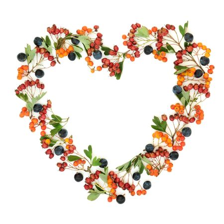 Photo for Autumn berry heart shaped wreath with blackthorn, hawthorn and rowan ash berries on white background with copy space. - Royalty Free Image