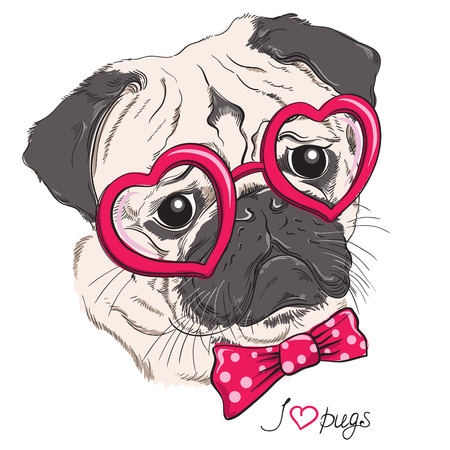 Illustration pour Fashion portrait of pug dog hipster in hearts glasses isolated on white. Vector hand drawn illustration - image libre de droit