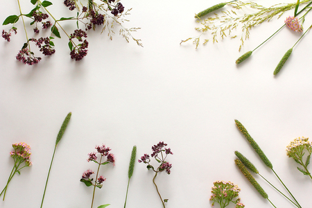 Photo pour Composition of wildflowers. Flat lay - image libre de droit