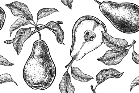Illustration pour Seamless pattern. Realistic fruit, branch and pear tree leaf. Black and white vegetarian food. Vector illustration art. Vintage engraving. Hand drawing. Template with nature motifs for kitchen design. - image libre de droit