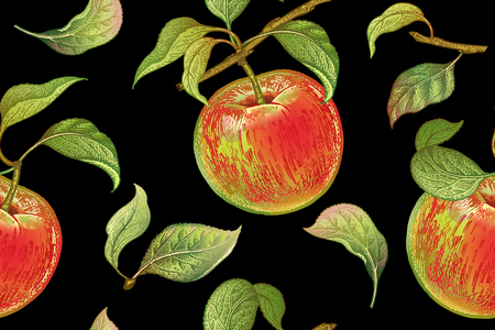 Illustration for Seamless pattern with red apples. Realistic vector illustration plant. Hand drawing with colored pencils. Fruit, leaf, branch of tree on black background. For kitchen design, food packaging. Vintage. - Royalty Free Image
