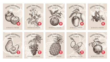 Ilustración de Labels with various fruits, berries and inscriptions. Set templates price tags for shops and markets of organic vegetarian food. Vector illustration art. Vintage. Hand drawing of nature objects. - Imagen libre de derechos
